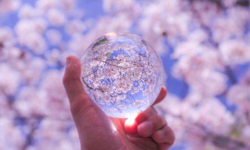 水晶玉と桜